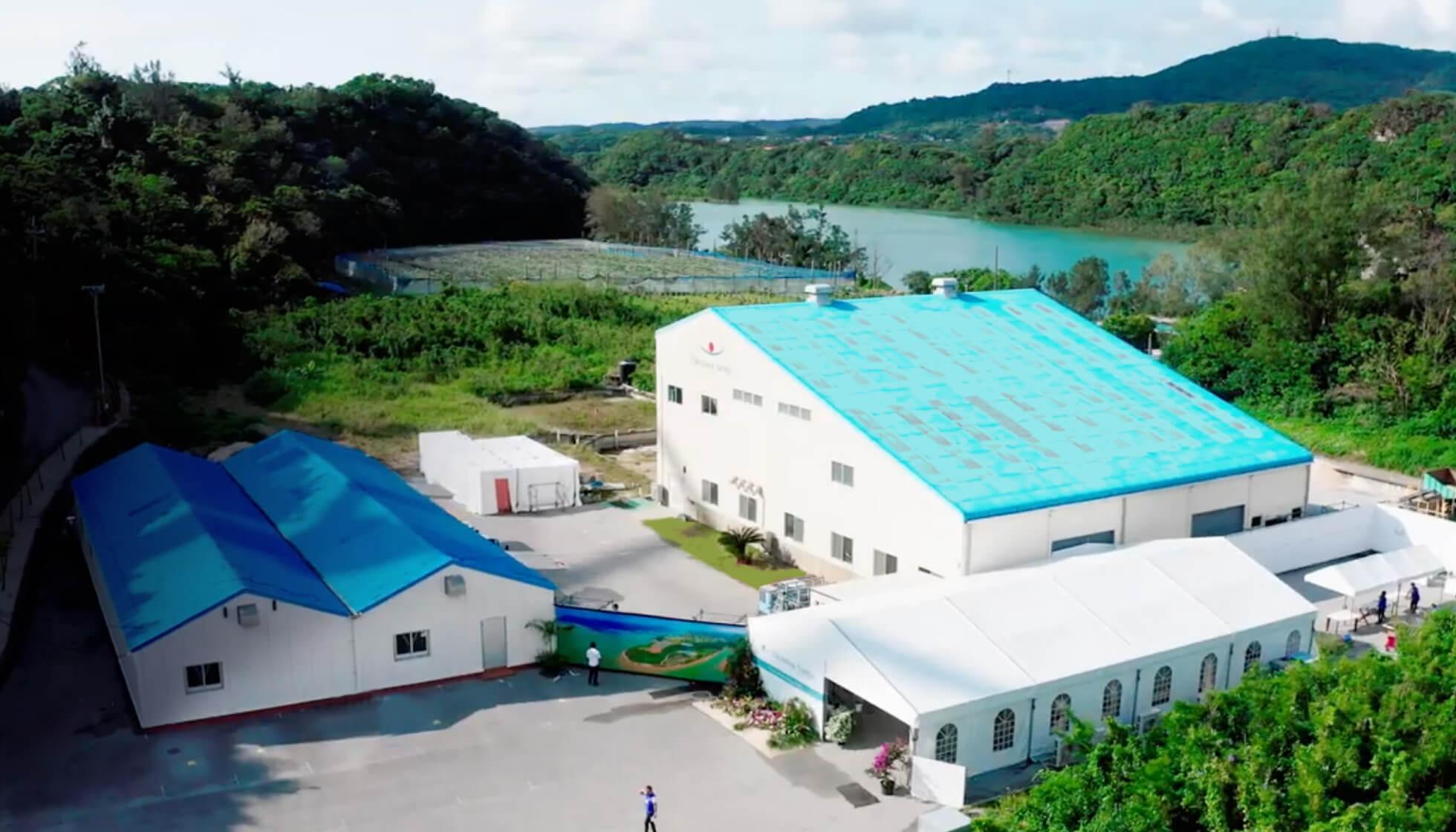 Sango Studio